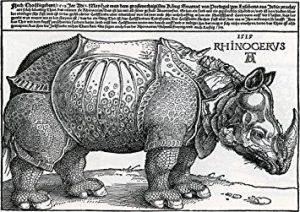 Rönesans'ta Bir Marka : Albrecht Dürer